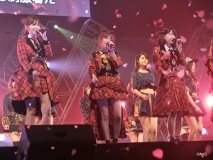 M14.桜の花びらたち②