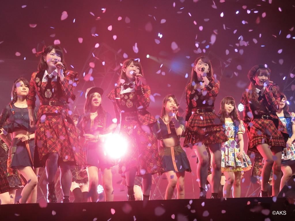 M14.桜の花びらたち③